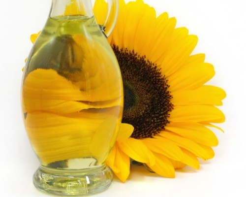 Aceite de girasol: datos curiosos que no conocías